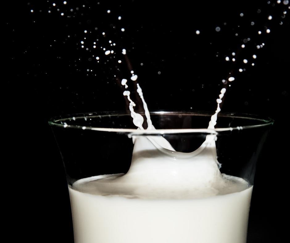 Beskytter mælk vores knogler?